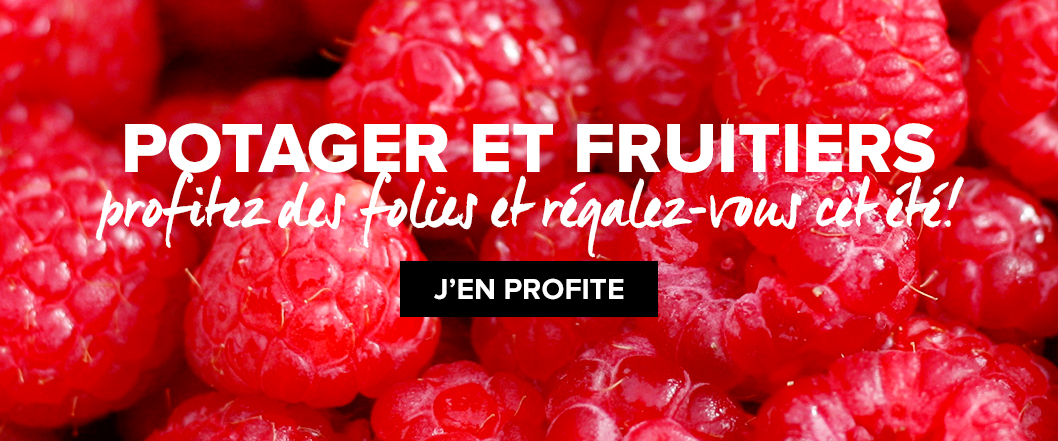 potager-fruitiers